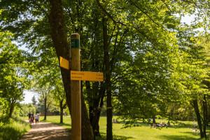 Parc Lacroix-Laval-1353