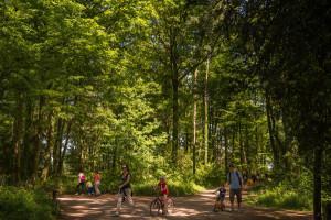 Parc Lacroix-Laval-1377