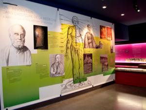 musee-sciences-biologiques-docteur-merieux-picvisit